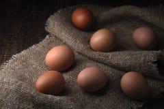 Ovos da galinha na lona horizontal Fotos de Stock