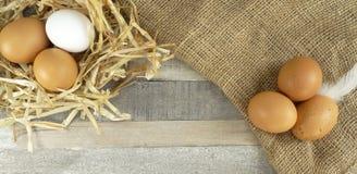 Ovos da galinha no ninho com serapilheira sobre o fundo de madeira fotografia de stock