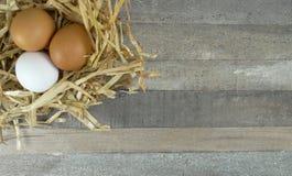 Ovos da galinha no ninho da palha com serapilheira sobre o fundo de madeira fotografia de stock