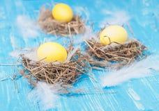 Ovos da páscoa amarelos no ninho Fotos de Stock Royalty Free