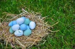 Ovos da páscoa bonitos em uma grama verde Fotografia de Stock