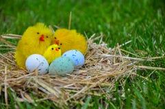 Ovos da páscoa bonitos em uma grama verde Imagens de Stock