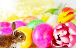 Ovos da páscoa, coelho, tulipas imagens de stock