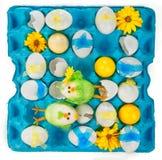 Ovos da páscoa coloridos com aves jovens Fotos de Stock