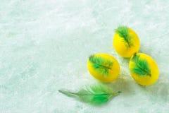 Ovos da páscoa coloridos decorados com penas Fotos de Stock