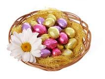 Os ovos da páscoa coloridos do chocolate na cesta com camomila florescem fotos de stock royalty free