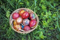 Ovos da páscoa coloridos em um fundo da cesta e da grama verde Foto de Stock Royalty Free