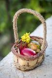 Ovos da páscoa coloridos em um fundo da cesta e da grama verde Fotografia de Stock Royalty Free