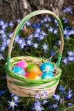 Ovos da páscoa coloridos em uma cesta no prado da flor Fotos de Stock Royalty Free