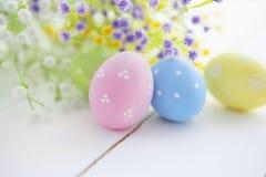 Ovos da páscoa coloridos na margarida das flores frescas Foto de Stock