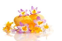 Ovos da páscoa com açafrões Imagem de Stock Royalty Free