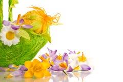 Ovos da páscoa com açafrões Foto de Stock Royalty Free