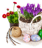 Ovos da páscoa com as flores da mola na cesta Fotografia de Stock