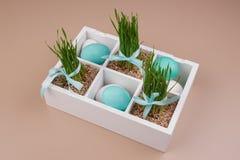 Ovos da páscoa com a decoração da grama na caixa Fotografia de Stock