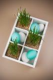 Ovos da páscoa com a decoração da grama na caixa Fotos de Stock Royalty Free