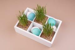 Ovos da páscoa com a decoração da grama na caixa Fotografia de Stock Royalty Free