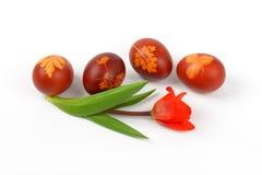 Ovos da páscoa com decoração do eco foto de stock