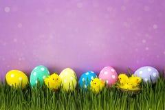 Ovos da páscoa com a galinha decorativa na grama verde fresca no purp Foto de Stock