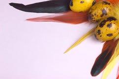 Ovos da páscoa das codorniz decorados com penas coloridas Foto de Stock