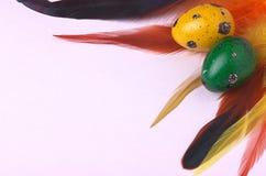 Ovos da páscoa das codorniz decorados com penas coloridas Imagens de Stock