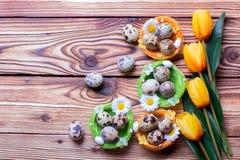 Ovos da páscoa das codorniz no ninho fotografia de stock royalty free