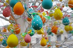 Ovos da páscoa decorados que penduram em ramos de árvore Imagem de Stock