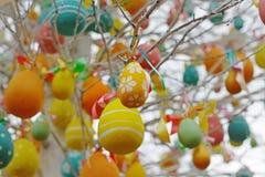 Ovos da páscoa decorados que penduram em ramos de árvore Foto de Stock