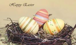 Ovos da páscoa decorativos bonitos no ninho Imagens de Stock