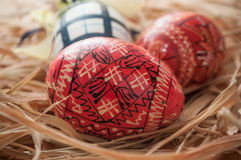 Ovos da páscoa decorativos em um ninho Fotografia de Stock