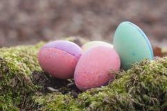 Ovos da páscoa decorativos no musgo na floresta Imagens de Stock Royalty Free