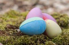 Ovos da páscoa decorativos no musgo na floresta Foto de Stock Royalty Free