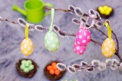 Ovos da páscoa decorativos no salgueiro de bichano Foto de Stock