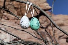 Ovos da páscoa decorativos que penduram em uma árvore do deserto Imagem de Stock Royalty Free