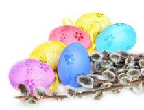 Ovos da páscoa e bichano-salgueiro coloridos no fundo branco Imagem de Stock