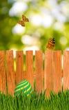 Ovos da páscoa e borboletas no fundo de madeira da cerca Fotos de Stock