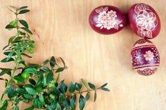 Ovos da páscoa e boxwood Imagens de Stock Royalty Free