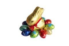 Ovos da páscoa e coelho Imagem de Stock