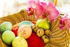 Ovos da Páscoa e de codorniz em uma cesta de vime com Imagem de Stock