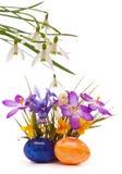 Ovos da páscoa e flores da mola Fotos de Stock