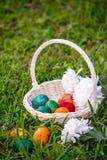 Ovos da páscoa e mums na cesta de vime imagens de stock royalty free