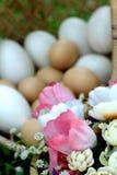 Ovos da páscoa e ovos brancos com flores artificiais Imagem de Stock Royalty Free