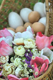 Ovos da páscoa e ovos brancos com flores artificiais Fotografia de Stock