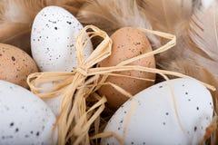 Ovos da páscoa e penas na cesta Foto de Stock