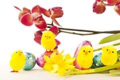 Decorações de Easter com orquídea e pintainhos Imagem de Stock Royalty Free