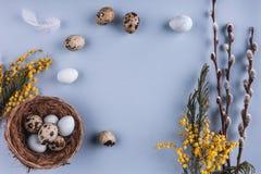 Ovos da páscoa em flores do ninho e da mola no fundo do feriado Imagem de Stock