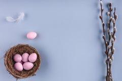 Ovos da páscoa em flores do ninho e da mola no fundo do feriado Vista superior com espaço da cópia Imagem de Stock Royalty Free