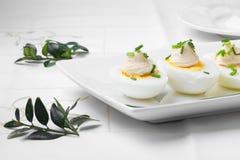 Ovos da páscoa fervidos com maionese Imagem de Stock