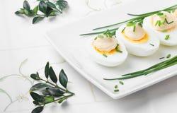 Ovos da páscoa fervidos com maionese Imagens de Stock Royalty Free