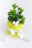 Ovos da páscoa, flowerpot e fita no backgound brilhante Imagens de Stock