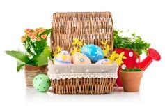 Ovos da páscoa na cesta com flores da mola e folhas do verde Fotos de Stock Royalty Free